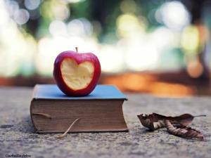 apple-autumn-book-colours-Favim.com-614484