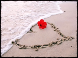 heart_and_flower_in_sand
